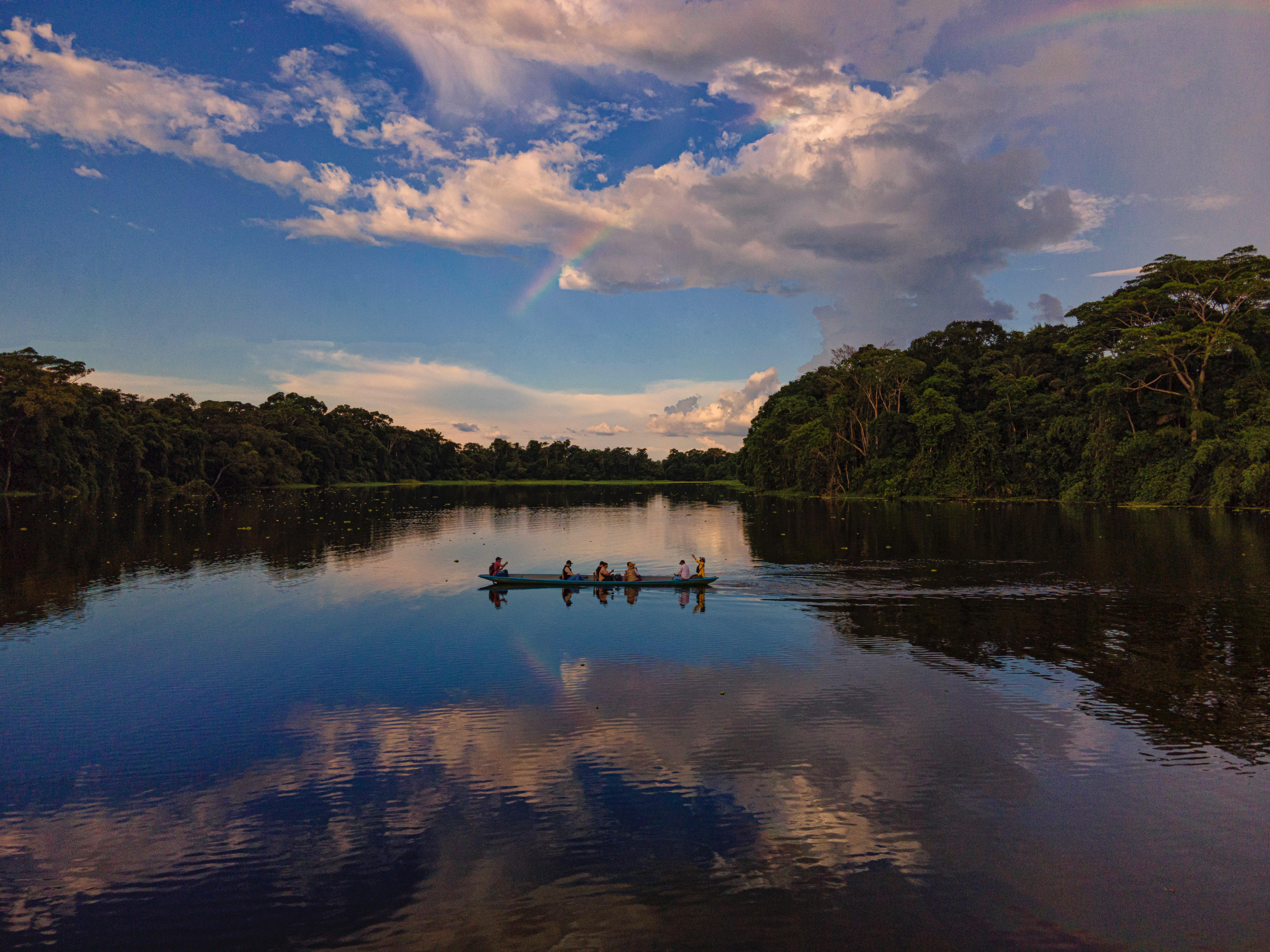 A política ambiental do Governo Bolsonaro: do início às consequências
