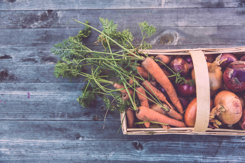 Sustentabilidade na cozinha: como tornar a alimentação mais sustentável?